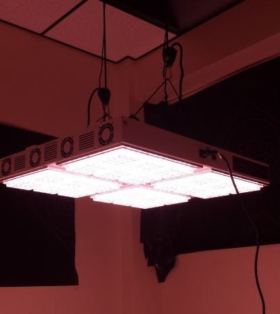 Apache Tech AT600 White and Red LED Grow Light