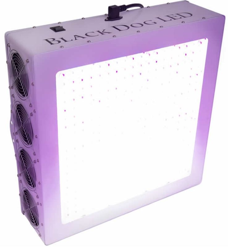 blackdog phytomax led grow light