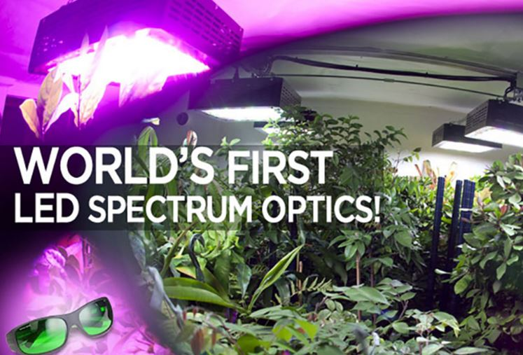 Method Seven Operator LED Grow Room Glasses
